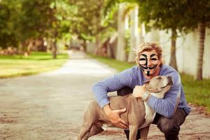 Most Disturbing Sites on the Dark Web animal abuse